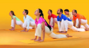 SIVANANDA Yogazentrum München
